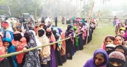 হাইমচর উপজেলা নির্বাচনে ভোটগ্রহণ শুরু: চলছে ভোট গ্রহণ