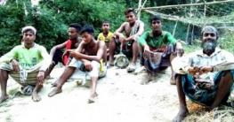 উল্লাপাড়ায় চরম গরমে অস্বস্তিতেও খুশী কৃষক