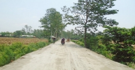 দৃশ্যমান হতে যাচ্ছে কাজিপুরের চরাঞ্চলের ৪০ কিলোমিটার রাস্তা