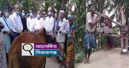 সিরাজগঞ্জ গরু নিয়ে হাজির জেলা প্রশাসক ঘানি টানা জাকিরের বাড়িতে