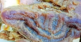 সলঙ্গায় কোরবানীর মাংশে আল্লাহু লেখা