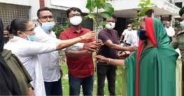 উল্লাপাড়ায় মুজিববর্ষ উপলক্ষে আনসার ভিডিপির বৃক্ষ রোপণ উদ্বোধন