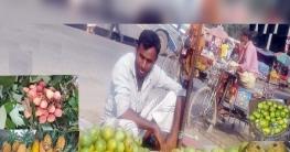 সলঙ্গায় রসালো ফল বিক্রিতে ব্যস্ত মৌসুমী ব্যবসায়ীরা