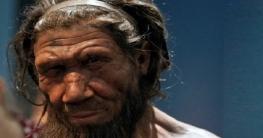 নিয়ান্ডারথাল মানুষরা কেন পৃথিবী থেকে হারিয়ে গিয়েছিল?