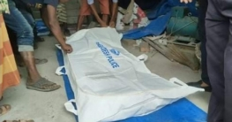 উল্লাপাড়ায় সড়ক দুর্ঘটনায় নির্মান শ্রমিক নিহত