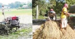 উল্লাপাড়ায় কৃষিতে আধুনিক প্রযুক্তি ব্যবহার